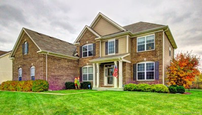 1254 Star Grass Lane, Aurora, IL 60506 - #: 10361717