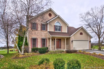 505 Blackberry Ridge Drive, Aurora, IL 60506 - #: 10361769