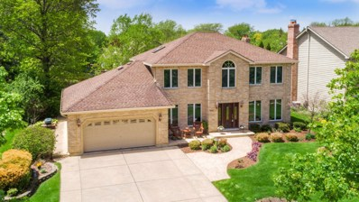 6740 Dunham Road, Downers Grove, IL 60516 - #: 10361795