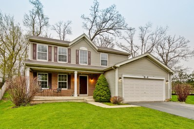 2805 Hidden Valley Court, Carpentersville, IL 60110 - #: 10362746