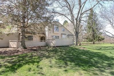 594 Shoreline Road UNIT 0, Lake Barrington, IL 60010 - #: 10362801