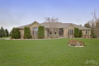 3709 Prairie Drive, Spring Grove, IL 60081 - #: 10363145