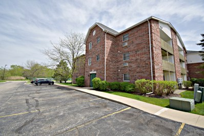 330 Leah Lane UNIT 3B, Woodstock, IL 60098 - #: 10363247