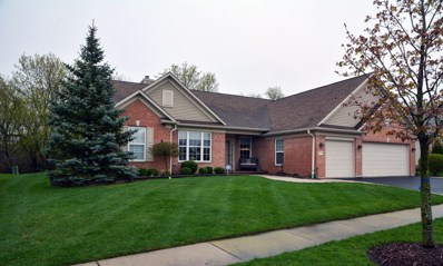 13713 Roosevelt Drive, Huntley, IL 60142 - #: 10363768
