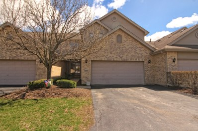 11841 Somerset Road, Orland Park, IL 60467 - #: 10364005