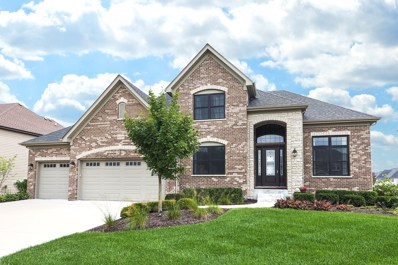 4120 Chinaberry Lane, Naperville, IL 60564 - #: 10364907