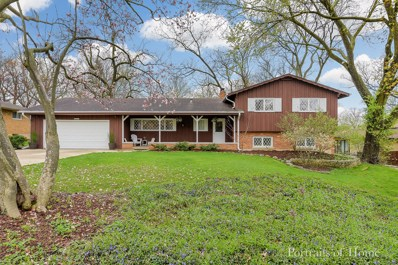 23W041  Red Oak, Glen Ellyn, IL 60137 - #: 10365628