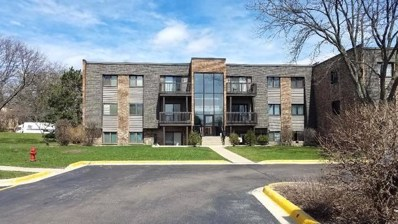 1480 Stonebridge Circle UNIT D10, Wheaton, IL 60189 - #: 10366988