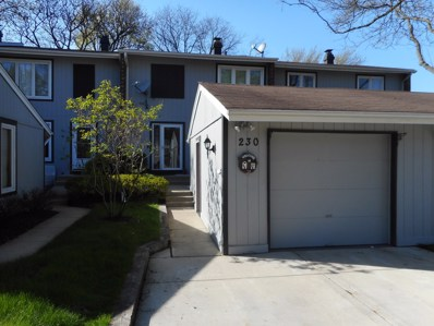 230 Driftwood Lane, Bloomingdale, IL 60108 - #: 10367915