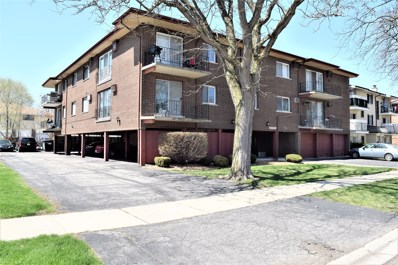 10440 Mason Avenue UNIT 101, Oak Lawn, IL 60453 - #: 10368327