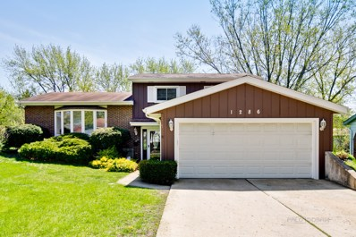 1286 Downing Court, Wheaton, IL 60189 - #: 10368424