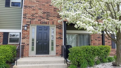 1356 Mc Dowell Road UNIT 103, Naperville, IL 60563 - #: 10369537