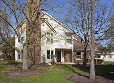 256 Willow Parkway, Buffalo Grove, IL 60089 - #: 10369895
