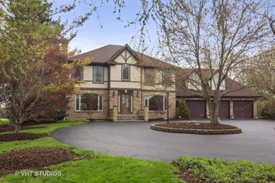 2 Chantilly Lane, Hawthorn Woods, IL 60047 - #: 10369912
