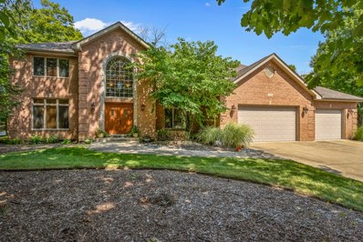 11534 Swinford Lane, Mokena, IL 60448 - #: 10370047