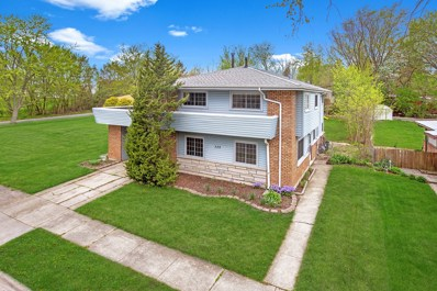 328 Sioux Street, Park Forest, IL 60466 - #: 10370821