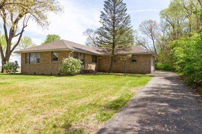 3887 State Route 1, St. Anne, IL 60964 - MLS#: 10371077