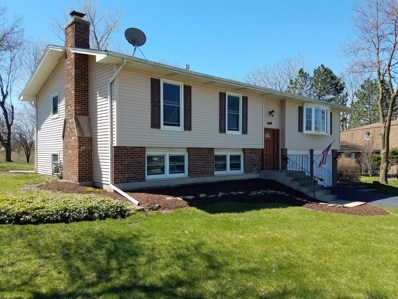 6680 Springside Avenue, Downers Grove, IL 60516 - #: 10371088