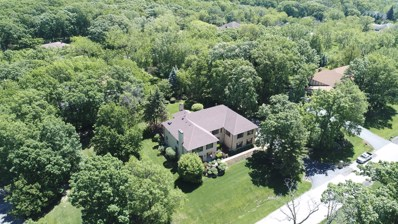 4 Black Walnut Trail, Palos Park, IL 60464 - #: 10371710