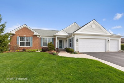 14082 Francesca Cove, Huntley, IL 60142 - #: 10371846