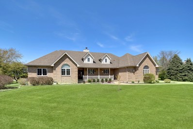 14352 Summerfield Drive, New Lenox, IL 60451 - #: 10372060