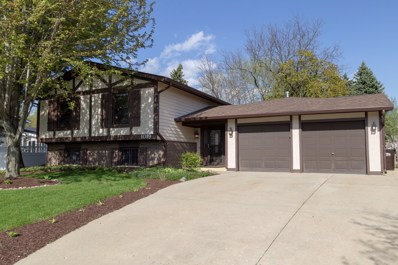 1019 Coventry Lane, Crystal Lake, IL 60014 - #: 10372408