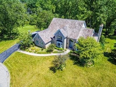 1480 Anderson Drive, Green Oaks, IL 60048 - #: 10372489