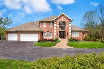 25834 N Knollwood Drive, Barrington, IL 60010 - #: 10372570