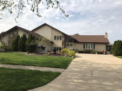 224 Waterford Drive, Willowbrook, IL 60527 - #: 10372775