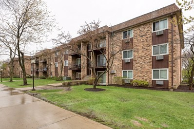 680 Hill Drive UNIT 5-313, Hoffman Estates, IL 60169 - #: 10372847