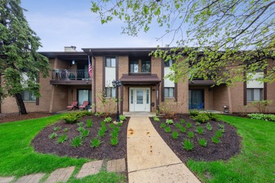 2221 Wharf Drive UNIT 205, Woodridge, IL 60517 - #: 10373378