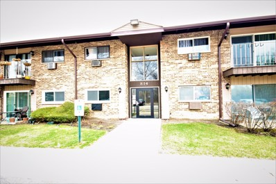 814 E Old Willow Road UNIT 210, Prospect Heights, IL 60070 - #: 10373380