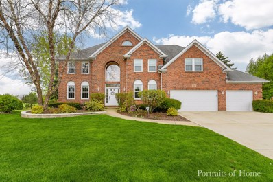 1527 Monarch Circle, Naperville, IL 60564 - #: 10373638