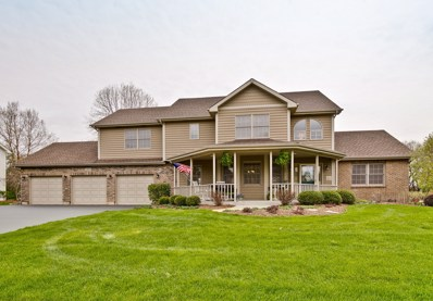1201 Cougar Trail, Cary, IL 60013 - #: 10373653