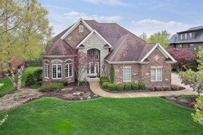 40 Deer Lane, Lemont, IL 60439 - #: 10373744