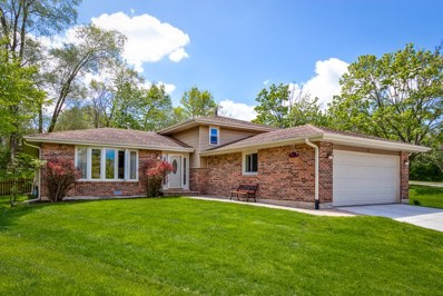 6 N Charles Street, Naperville, IL 60540 - #: 10374092