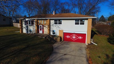 3202 W Skyway Drive, Mchenry, IL 60050 - #: 10374141