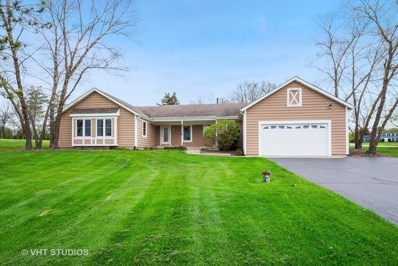 25386 W Marilyn Meadow Court, Wauconda, IL 60084 - #: 10375137