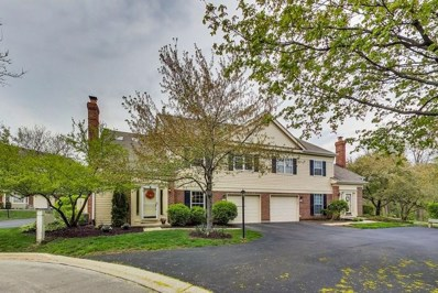 127 Bent Creek Court, Palatine, IL 60067 - #: 10377250