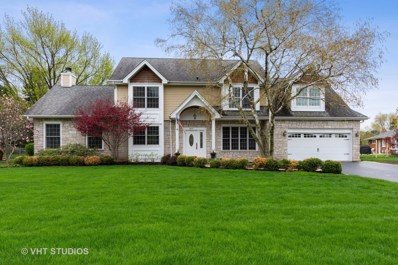 409 Nawata Place, Prospect Heights, IL 60070 - #: 10377409