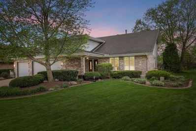 17162 Brushwood Lane, Orland Park, IL 60467 - #: 10377950