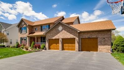 1420 Mallard Lane, Hoffman Estates, IL 60192 - #: 10378767