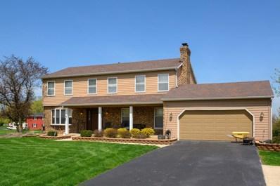 9623 S Carls Drive, Plainfield, IL 60585 - #: 10379573