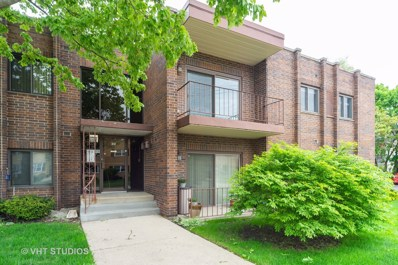 105 S Arlington Avenue UNIT 204, Elmhurst, IL 60126 - #: 10379647