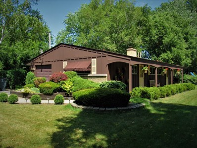 504 S Butterfield Road, Libertyville, IL 60048 - #: 10379792