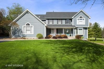 913 Silver Glen Road, Mchenry, IL 60050 - #: 10379866