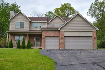 5102 Wood Duck Lane, Richmond, IL 60071 - #: 10380168