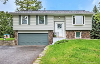 1200 Elm Street, Lake In The Hills, IL 60156 - #: 10380229