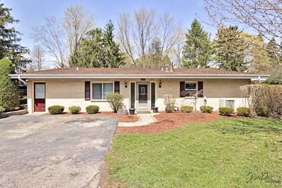 1317 N Cedar Lake Road, Lake Villa, IL 60046 - #: 10380827