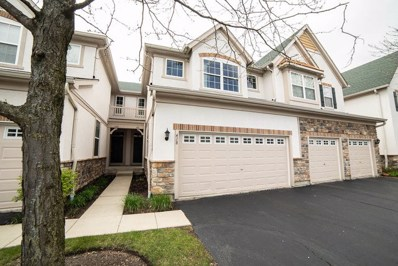 418 Shadow Creek Drive, Vernon Hills, IL 60061 - #: 10381299